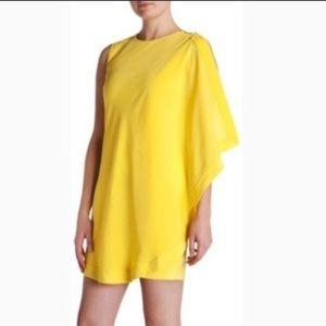 Ted Baker Bolty Asymmetrical Tunic Mini Dress 10